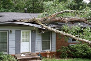 Storm Damage Restoration Omaha NE